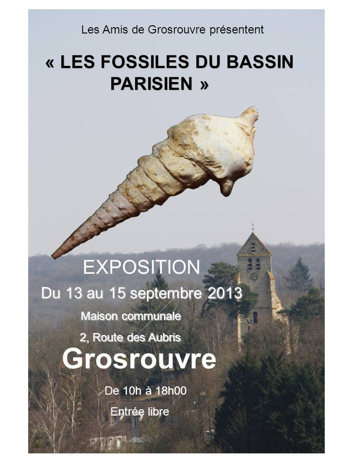 AFFICHE EXPO FOSSILES
